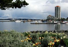 Nanaimo, BC Vancouver Island, Canada Vancouver, The Province, British Columbia, West Coast, Geography, North America, New York Skyline, Beautiful Places