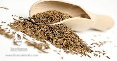 Benefícios das sementes de cominhos