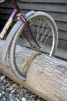 Tree stump bike rack