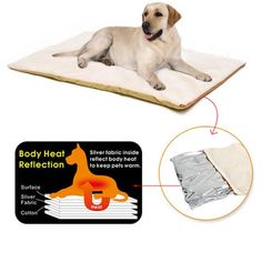 Dog Bed Winter Super Warm Comfortable Heating Pad Mat For Dog Cat Machine Washable Non-slip Detachable Cover Pet House Cushion. Cheap Dog Beds, Heated Pet Beds, Cat Rug, Cat Machines, Bed Mats, Animal Pillows, Cat Toys, Pets, Pet Shop