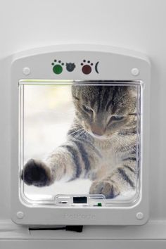 Cat flap distinguishes between cats using their microchips, so only your cats get inside