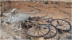 In the second time in two years, an Iron Age chariot has been found buried in a Yorkshire community. The discovery was made in the town of Pocklington,