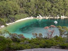 We walked here on the camp - 20 kms in one day. Worth it, most beautiful beach I have ever been to! Wilsons Prom, Most Beautiful Beaches, Gods Creation, Victoria Australia, Family Holiday, Places Ive Been, Hiking, Camping, River