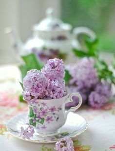 Nostalgia in Lilac for any afternoon tea Teacup Flowers, Lilac Flowers, Beautiful Flowers, Lilac Bouquet, Romantic Flowers, Edible Flowers, Cut Flowers, Color Lavanda, Lavender Cottage