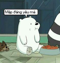 We Are Bears, Dear Crush, Koi, Anime, Memes, Caption, Avatar, Funny, Cute