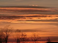 alba                      dawn