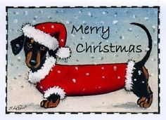 Dachshund Dog in snow art painting pack of 6 Christmas cards by Suzanne Le Good Arte Dachshund, Dachshund Puppies, Dachshund Love, Daschund, Dachshund Drawing, Vintage Dachshund, Christmas Dog, Vintage Christmas, Merry Christmas