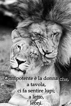 Love Myself as a lion, lion couple, lion family, lions cub Couple Lion, Beautiful Cats, Animals Beautiful, Animals And Pets, Cute Animals, Wild Animals, Animals Planet, Gato Grande, Lion Love