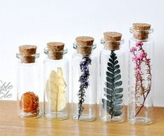 Glass bottles with dried flowers - lingke on Etsy Bottle Jewelry, Bottle Charms, Bottle Necklace, Wing Necklace, Flower Crafts, Flower Art, Flower Ideas, Best Skincare Products, Deco Floral