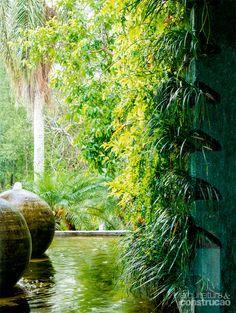 Um jardim cresce na parede externa vizinha da sala principal, neste projeto de Fabio Galeazzo