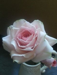 {Pleasing soft-pink Rose by La Lavande Sugar Florist}