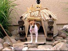 dog house tropical tiki hut for a dog cute