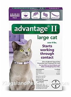 Bayer Advantage II Cat over 9 lbs 6pk *** More info could be found at the image url.(This is an Amazon affiliate link and I receive a commission for the sales)