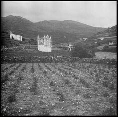 Greek Islands, Old Photos, All Things, Greece, Beautiful Places, Memories, Black And White, History, Country