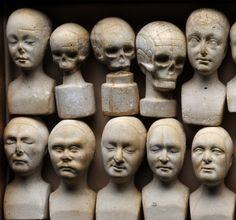 Set of Phrenological heads - Manchester, England 1831. Phrenology originated with Franz Joseph Gall (1758-1828), a German physician, assisted by his colleague Johann Kaspar Spurzheim (1809-1872).