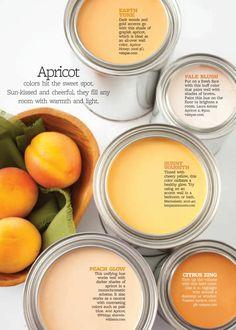 Wandfarbe auswählen, Farbe Apricot verschiedene Nuancen, Aprikosen in Holzschale