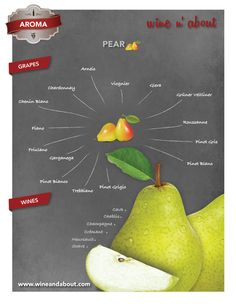 Aromas of wine : Pear Pinot Blanc, Pinot Gris, Wine And Cheese Party, Wine Tasting Party, Sweet Champagne Brands, Riesling Wine, Wine Chart, Wine Varietals, Chenin Blanc