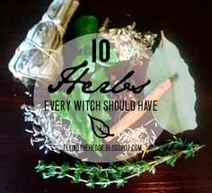 10 Herbs Every Witch Should Have