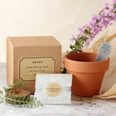 Personalised 'Grow Strong' Plant Set by Kutuu, the perfect gift for Explore more unique gifts in our curated marketplace. Watch Me Grow, Plant Markers, Bunch Of Flowers, Terracotta Pots, Paper Gifts, Baby Boy Shower, Planter Pots, Seeds, Place Card Holders