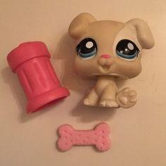 Littlest Pet Shop 1706 RARE Boxer Puppy Dog Cream White Blue Eyes w Toys | eBay