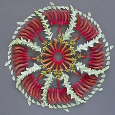 Kangaroo paw and melaleuca Rangoli Designs Flower, Flower Rangoli, Flower Mandala, Mandala Art, Flower Designs, Flower Art, Land Art, Collages, Kangaroo Paw
