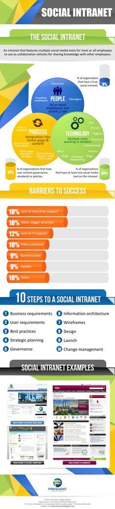 The Social Intranet Infographic — Intranet design, intranet consultant, social intranet, website planning – Prescient Digital