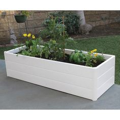 The Nuvue Terrace Garden Box is both elegant and functional. It is designed for small space gardening allowing you to grow your vegetables, herbs, flowers and fruits conveniently. The Terrace Garden Box Diy Garden, Garden Boxes, Garden Planters, Lawn And Garden, Garden Projects, Diy Raised Garden Beds, Raised Garden Beds Cinder Blocks, Garden Ideas, Garden Container