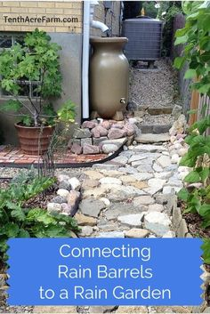 Directing rain barrel overflow into a rain garden is one way to keep more water on your property and create more biodiversity, too.: http://www.tenthacrefarm.com/2015/06/connecting-rain-barrels-to-a-rain-garden/?utm_term=0_161e15a91e-fcb5f3c48b-