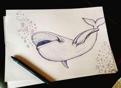 Delfin oder Wal? :)