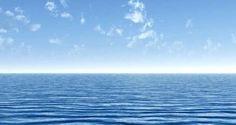 Assunção Cristas inicia o Roteiro do Mar na Universidade do Algarve! | Algarlife