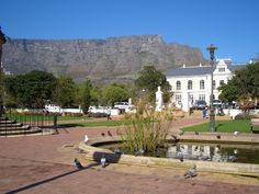 Holiday Places, Out Of Africa, Cape Town, Touring, Places Ive Been, South Africa, Birth, Beautiful Places, Places To Visit