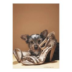 Customizable #Animal #Animal#Themes #Brown #Colored#Background #Cute #Damaged #Dog #Glamour #Gold #High#Heels #Insurance #Looking#At#Camera #Lying#Down #Mischief #No#People #One#Animal #Pair #Pampered#Pets #Pets #Photography #Studio#Shot #Two#Objects #Vertical #Waist#Up #Young#Animal Puppy with damaged shoe canvas print available WorldWide on http://bit.ly/2h6tWui