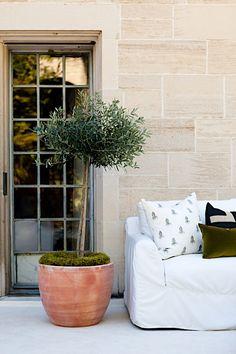 Lauren Liess Outdoor Couch, Outdoor Living, Outdoor Decor, Potted Olive Tree, Lauren Liess, Terrace Floor, Interior Decorating Tips, Interior Design, Southern Living Homes