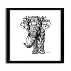 Affiche ORNATE ELEPHANT BY BIOWORKZ - 35 -...
