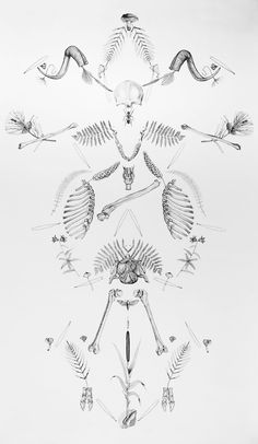 florence aellen PAN, 2016 Florence, Switzerland, Tattoos, Artist, Flowers, Tatuajes, Florals, Japanese Tattoos, Tattoo