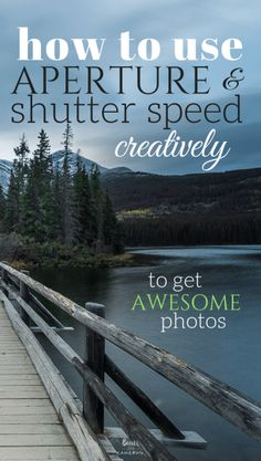 How to Use Aperture and Shutter Speed Creatively to get Awesome Photos - Bears with Cameras