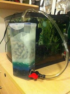 About the Necessity of Good Aquarium Filter for your Fish You've lastly chosen to bring a brand-new pastime to your life and that's keeping a tropical fish, Aquarium Aquascape, Aquarium Diy, Best Aquarium Filter, Seahorse Aquarium, Aquarium Sump, Aquarium Stand, Aquarium Decorations, Aquarium Fish Tank, Planted Aquarium