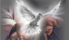 Reflexión Espíritu santo Pido amorosamente a la Gran Fuerza Invisible y poderosa del Espíritu Santo que limpie toda impureza u obstrucción que haya en mi cuerpo y en mi mente; que me restaure en perfecta Le pido esto con toda la honradez y la sinceridad de mi alma con Dios, y cumpla yo mi parte. …