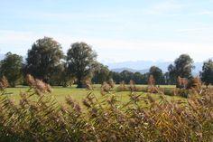 Blick auf Haarmoos und Berge (Bayern) • bavaria • germany