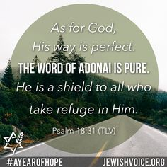 Sharing the Gospel of Yeshua (Jesus) to the Jew first and also to Gentiles. Learn about Messianic Judaism, Rabbi Jonathan Bernis, medical missions and more. Scripture Of The Day, Bible Verses, Messianic Judaism, Be Perfect, Good News, Ministry, Psalms, The Voice, Medical