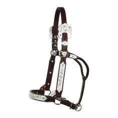 AHE TRESSÉ POLY cheval taille string MARTINGALE Cheval Tack Equine