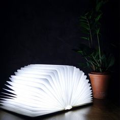 Gingko LED Smart Book