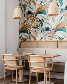 "Biasol on Instagram: ""Sisterhood 🍑 is our latest hospitality project bringing together🏝 coastal charm and 🍹 tropical vibes to Sandy Bay, Hobart in Tasmania. We…"""