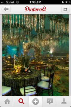 Bayou themed reception- this is stereotypical and not like real life in the swamp but I love it anyway