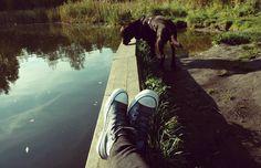 converse, dog, labrador, lake, silence