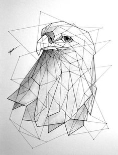 Healthy breakfast ideas for kids age 9 to make 3 12 11 Geometric Drawing, Geometric Shapes, Geometric Tattoo Eagle, Animal Drawings, Art Drawings, Llama Drawing, Eagle Drawing, Polygon Art, Sketchbooks