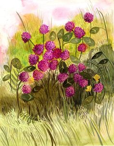 Red Clover Original Painting via Etsy