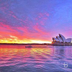 The Sydney Opera House // Sydney, NSW, Australia