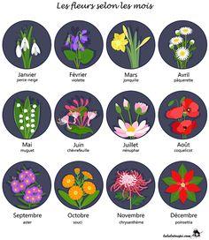 Les fleurs selon les mois, fiche gratuite à imprimer