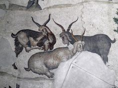 A man feeding a donkey, detail from the 6th c. AD mosaic floor in the Great Palace of Constantinople